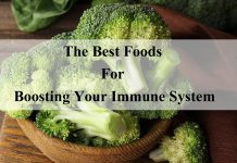 The Best Foods For Boosting Your Immune System