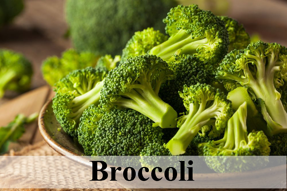 Broccoli, Healthy food for day to day life healthy food Healthy food for day to day life Broccoli