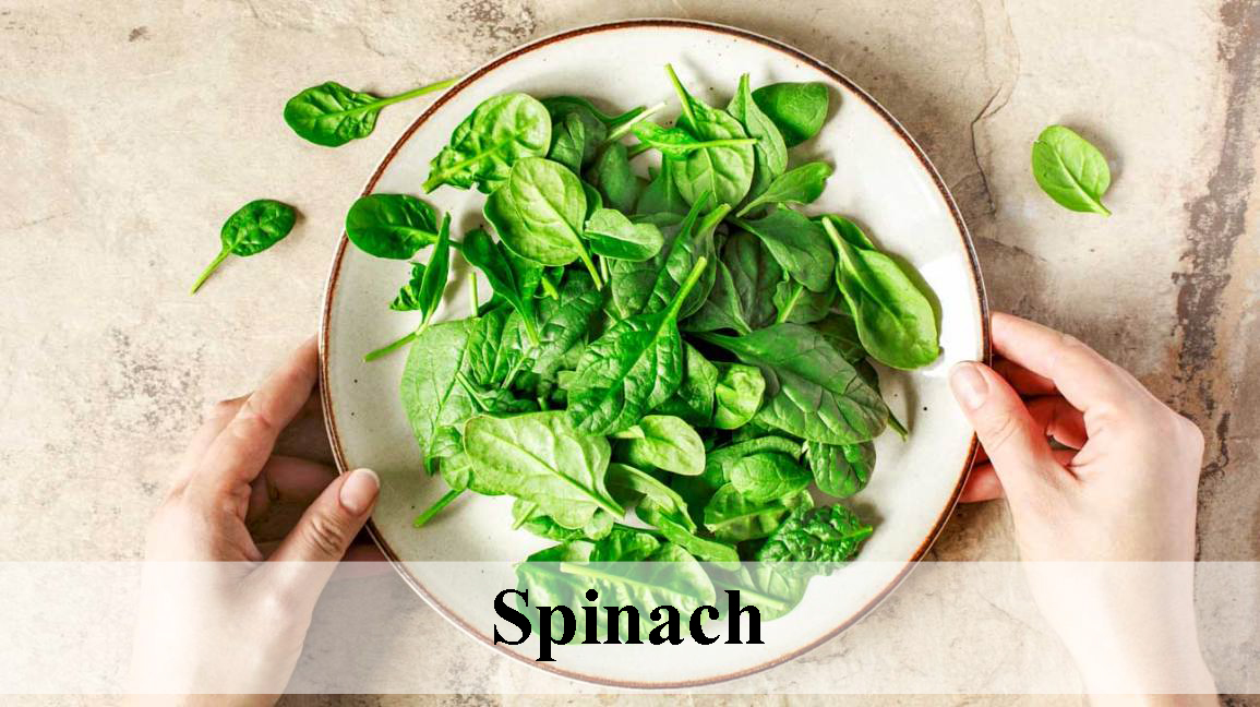Spinach, Healthy food for day to day life healthy food Healthy food for day to day life Spinach