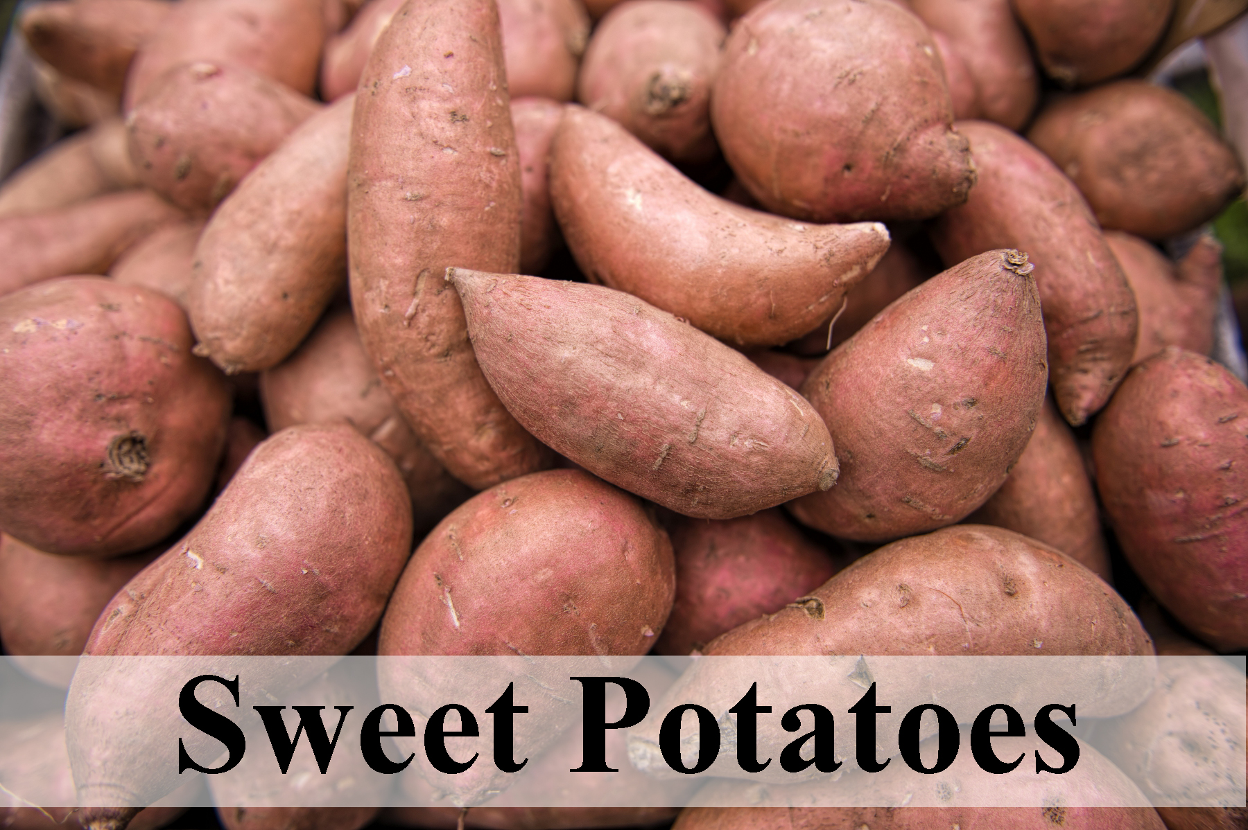 Sweet Potatoes, Healthy food for day to day life healthy food Healthy food for day to day life Sweet Potatoes